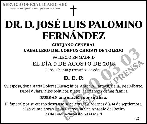 José Luis Palomino Fernández